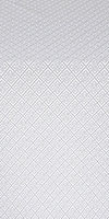 Omsk silk (rayon brocade) (white/silver)