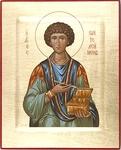 Religious icons: Holy Great Martyr and Healer Panteleimon - 9