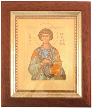 Icon: Holy Great Martyr and Healer Pantheleimon - 8