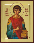 Icon: Holy Great Martyr and Healer Pantheleimon - G2 (5.1''x6.3'' (13x16 cm))