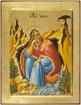 Icon: Holy Prophet Elijah - no.2225 (9.4''x11.8'' (24x30 cm))