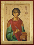 Icon: Holy Great Martyr and Healer Pantheleimon - X2322 (9.4''x12.2'' (24x31 cm))